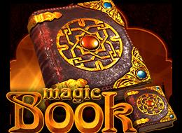 ballyw_magicbook