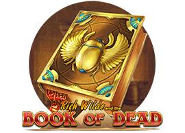 book-of-dead-slot-270-2